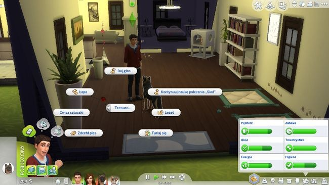 Дрессировка питомцев в sims 4: «кошки и собаки»
