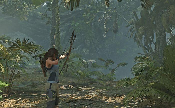 Перуанские джунгли